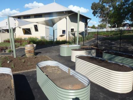 Hampton Park Community Garden - The Instant Veggie Garden